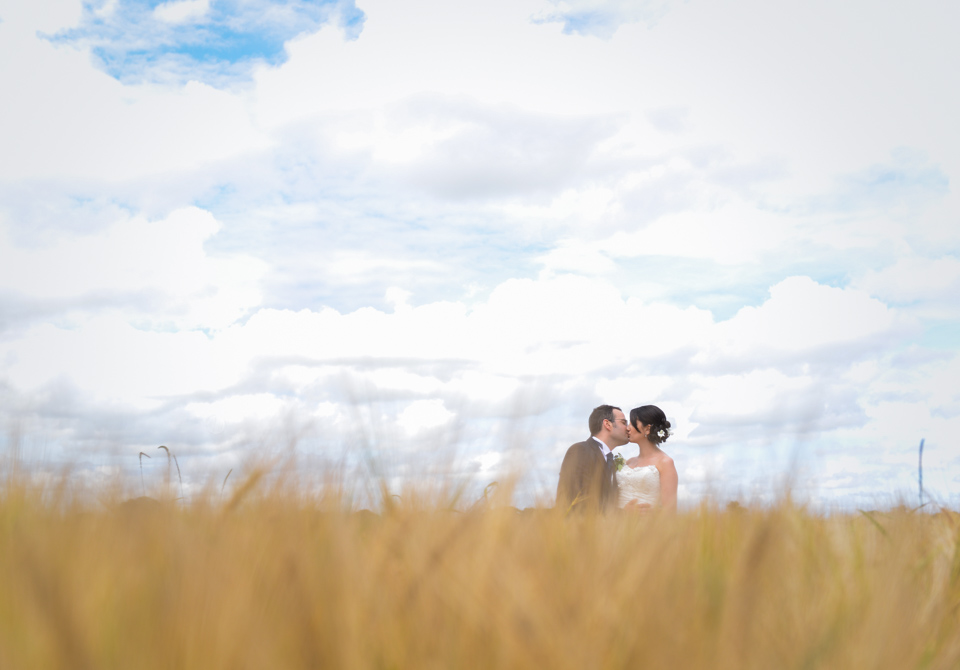 wedding photography, couple kissing in golden field of corn
