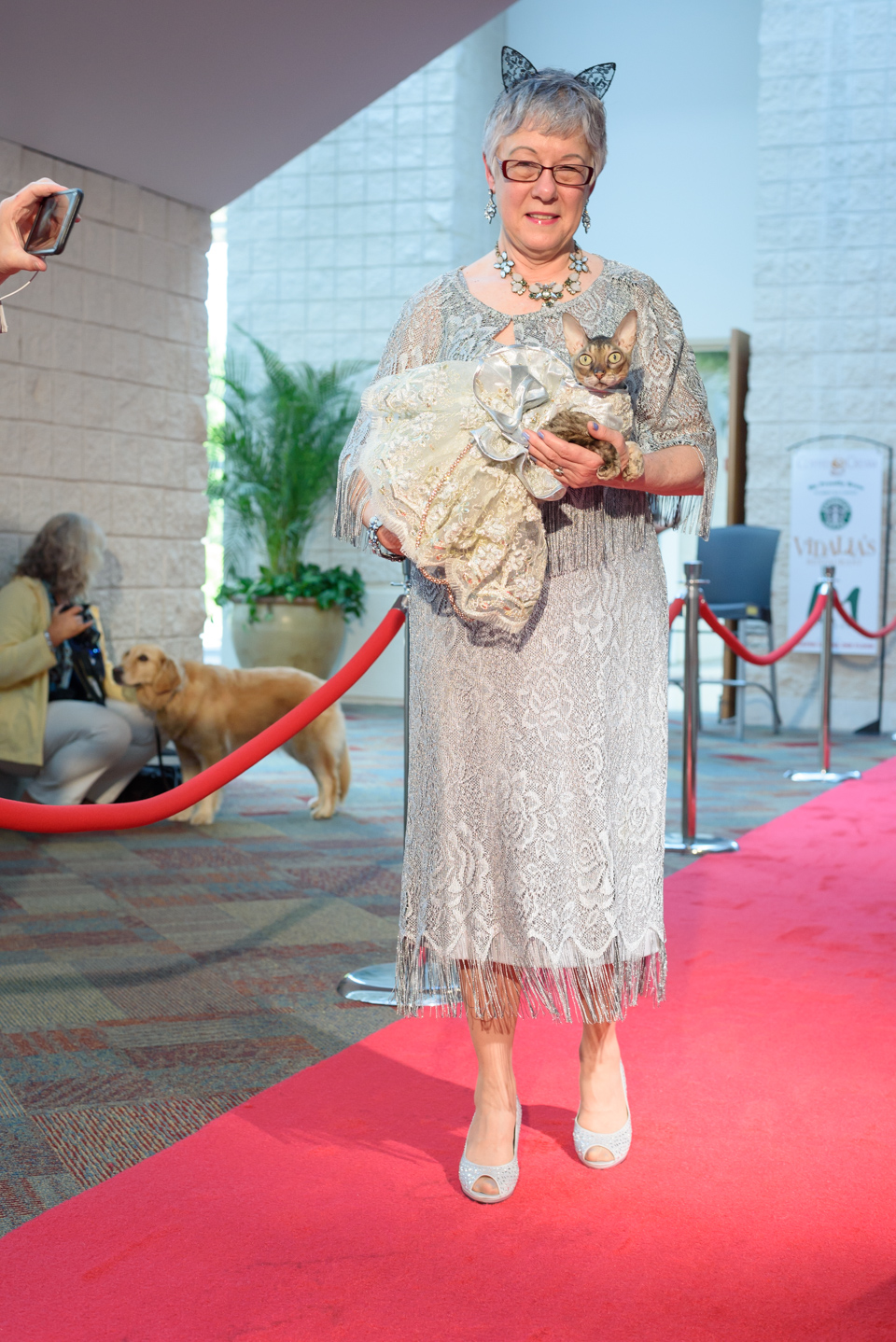 cat dresses in a victorian gown on the red carpet for blogpaws